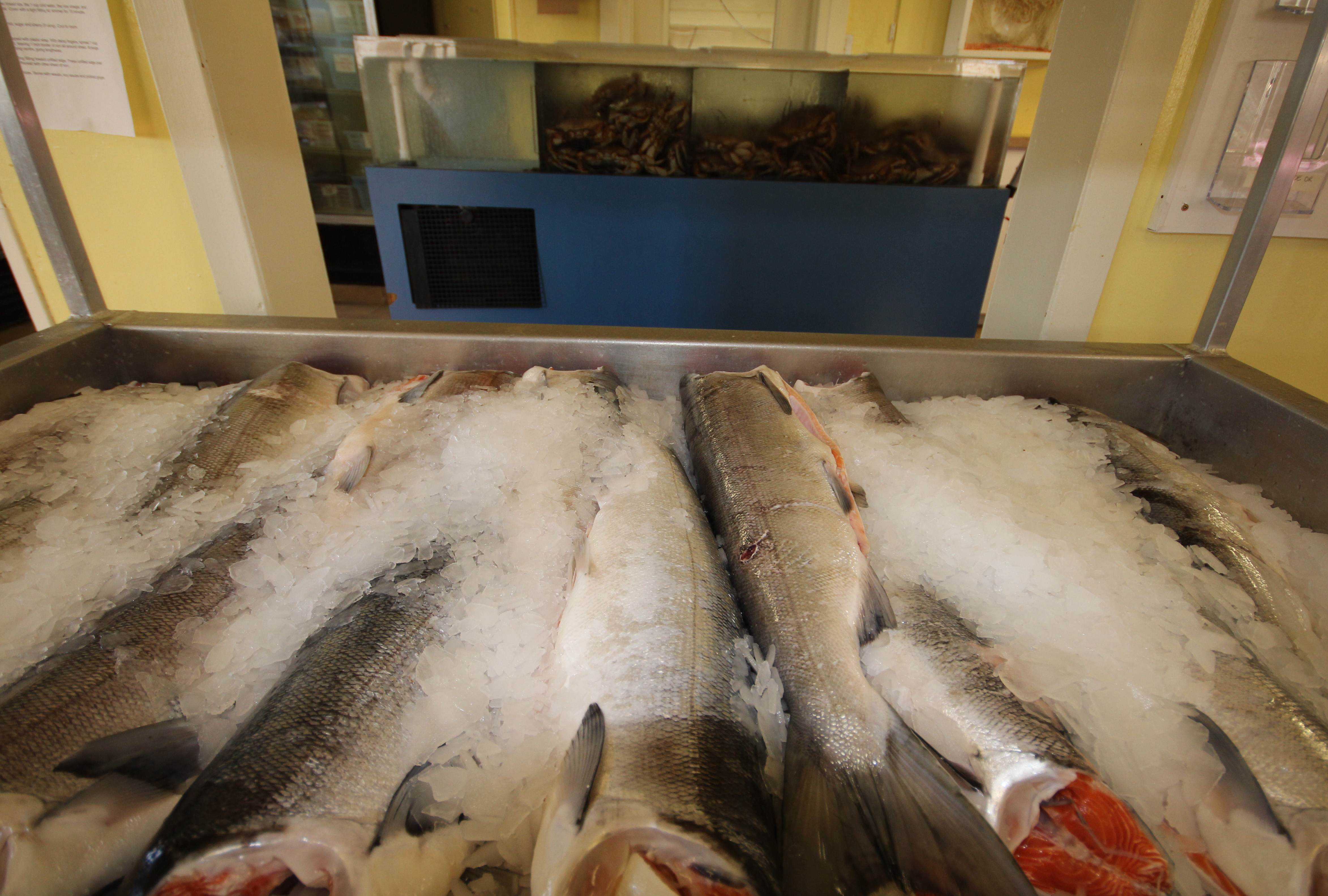 French Creek Seafood Fresh Fish